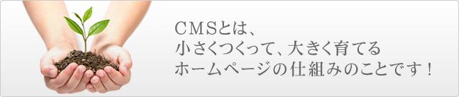 CMSとは、小さくつくって、大きく育てる、ホームページの仕組みのことです!