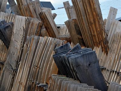 桐材の乾燥